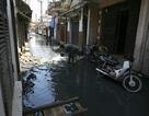 """Hà Nội: Chợ thịt """"nổi"""" giữa làng lụt nước"""