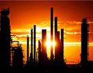 Bình Định sốt sắng với siêu dự án lọc dầu 22 tỷ đô la