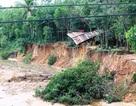 Bình Định: Nhiều hộ dân bất an vì sạt lở nghiêm trọng