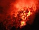 Đốt vàng mã, gây cháy rừng