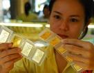 SJC ngừng mua vàng miếng móp mép vì... hết tiền