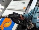 Đắk Lắk phạt 7 cơ sở vi phạm kinh doanh xăng dầu