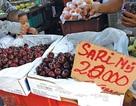 Trái Cherry Trung Quốc: Doanh nghiệp không khai thì khó biết