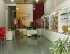 Các sản phẩm yến Ninh Thuận ế thảm hại
