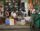 Nhân trần đường phố - Nguy hiểm khó lường