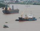 Doanh nghiệp vận tải biển: Thua lỗ, bán tàu, nguy cơ phá sản