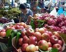 Ma trận hóa chất bảo quản trái cây: Bất lực?