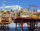 Đầu năm, dầu khí đòi nợ ngành thuế