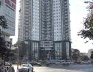 Times City bán hết veo gần 600 căn hộ chỉ trong 2 ngày