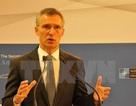Lãnh đạo NATO cảnh báo EU không thành lập quân đội riêng