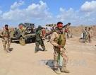 Iraq giải phóng phần lớn Tikrit