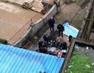 Tranh cãi sau vụ hổ vồ chết người tại vườn thú ở Trung Quốc