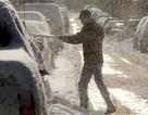 Bão tuyết dày cả mét bao trùm nửa nước Mỹ