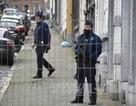 """""""Một loạt mối đe dọa sắp xảy ra"""" tại châu Âu"""