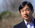 Thái tử Nhật Bản: Cần có cái nhìn đúng đắn về lịch sử