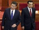 Trung Quốc triệt để chống tham nhũng