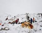 [Video] Khoảnh khắc lở tuyết kinh hoàng ở trên đỉnh Everest