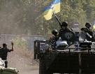 Những nước cờ cao tay của Nga trong ván bài Ukraine
