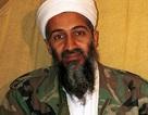 Tình báo Đức đã giúp CIA trong việc tìm kiếm, tiêu diệt Bin Laden