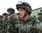 NATO tập trận tại Gruzia