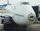 """Máy bay chở khách """"tơi tả"""" vì mưa đá"""