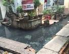 """Bài 18: """"Bó tay"""" trước nguyên nhân ô nhiễm, Quận Ba Đình """"chốt"""" xây cống mới"""