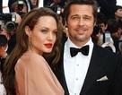 """Angelina Jolie: """"Thật tuyệt khi tôi và Brad đã là vợ chồng"""""""