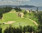 Chính thức xóa sổ sân golf Phan Thiết