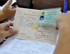 Thủ tướng giao Bộ Công an quy định cấp số định danh cho trẻ em