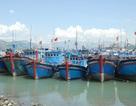 Phó Thủ tướng: Để bảo vệ biển đảo, phải bám mục tiêu đánh bắt xa bờ