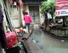 """Báo Thanh tra: Yêu cầu xử lý tình trạng ô nhiễm tại """"xóm nước cống"""""""