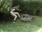Trêu cá sấu, nữ du khách vật lộn giữ mạng sống