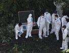 Mexico phát hiện 11 thi thể bị đốt cháy ở bang Guerrero