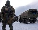 Chính trị gia Mỹ: Kích động chống Nga sẽ dẫn đến thảm họa