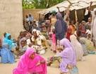Nigeria giải thoát hơn 230 phụ nữ, trẻ em khỏi Boko Haram
