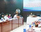 Bộ GD-ĐT kiểm tra công nhận phổ cập giáo dục mầm non ở Đà Nẵng