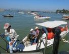 Tối đa 3.000 du khách được ra Cù Lao Chàm vào cao điểm mỗi ngày
