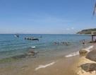 Nhiều du khách dời lịch đi Hàn Quốc do dịch Mers