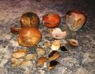 Phát hiện nhiều di vật cổ trong hang gần Thành nhà Hồ