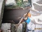 Công ty thủy sản xả thải trực tiếp ra môi trường
