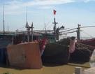 Bão áp sát, vẫn còn 170 tàu thuyền đang hoạt động trên biển