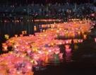 Lung linh lễ hội Cố đô Hoa Lư