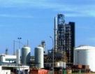Nhiều người bị lừa tìm việc tại Cty TNHH Lọc hóa dầu Nghi Sơn