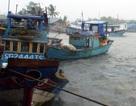 Ứng phó khẩn cấp với áp thấp nhiệt đới trên biển Đông