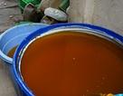 Sản xuất dầu ăn từ mỡ heo thối