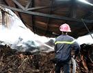 Xưởng đồ gỗ cháy lớn suốt 7 giờ đồng hồ