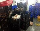 Tiêu huỷ hơn 3 tấn thực phẩm không xuất xứ trong cơ sở sản xuất giò chả