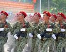 Hợp duyệt, chấm điểm đội hình diễu binh kỷ niệm 40 năm giải phóng