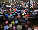 1,2 triệu sỹ tử Trung Quốc chen chân thi công chức