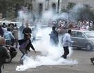 Ngành tư pháp Ai Cập nổi dậy chống tổng thống